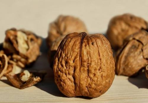 Healthy Food : Walnuts
