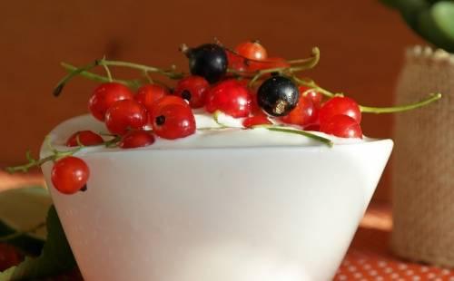 Yogurt with currants