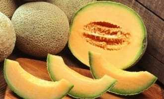 Muskmelon in pregnancy