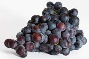 Black grape and juice