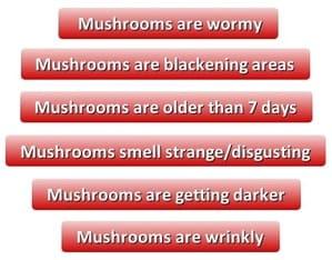 Bad mushrooms. Signs