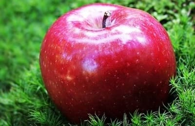 One ripe red apple